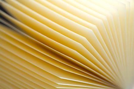 Zusammenfassung Hintergrund von Blättern sieht aus wie geöffnete Buch. Colse-up-Ansicht