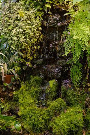 A small decorative waterfall surrounded by green plants and grass