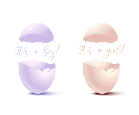 Newborn card elements. Vector pink eggshell with Its a Girl text and blue eggshell with Its a Boy text.