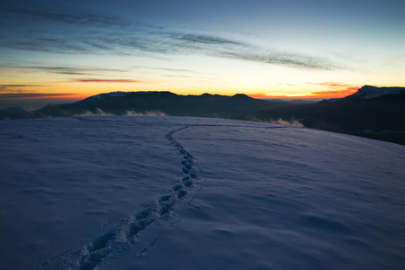 Tracks in the snow in the mountains