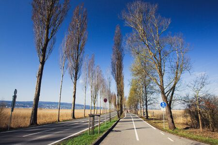 road bike: Bike path along the road