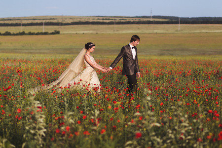 Newlyweds walking in amazing blossoming flowers field. Scope and panoramic views around Stock Photo