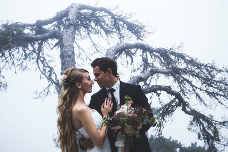 Portret jonggehuwden met achtergrond van grote boom in de mist. Stockfoto