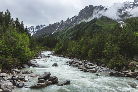 Strong river stream in Caucasian mountains, coniferous forest and tops of rocks in snow, cold and cloudy weather