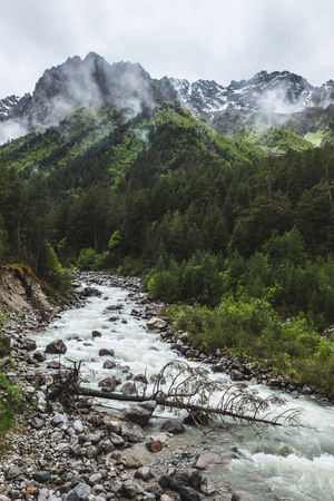 Fluxo forte do rio em montanhas caucasianas, floresta de coníferas e tops de rochas na neve, clima frio e nublado