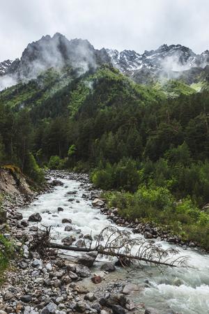 Silny strumień rzeczny w górach Kaukazu, las iglasty i szczyty skał w śniegu, zimnej i pochmurnej pogodzie Zdjęcie Seryjne