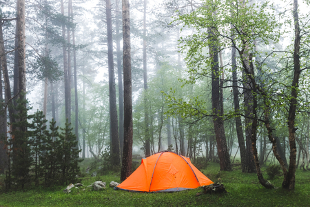 Orange lightweight tent in foggy forest. Cold and wet misty weather in hike, overnight stay