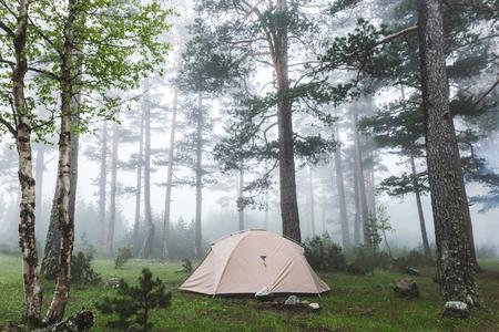 Tenda grigia leggera nella foresta nebbiosa. Tempo freddo e umido nebbioso in escursione, pernottamento in campeggio