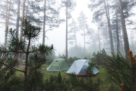 Due tende in foresta di conifere nebbiosa. Tempo freddo e umido in nebbia in escursione, pernottamento in campeggio