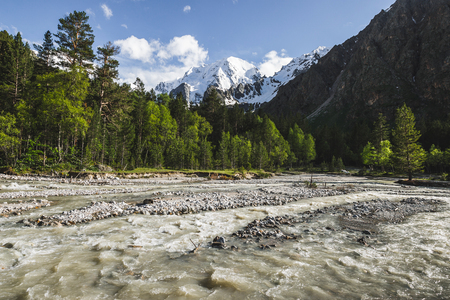 Strong river stream in Caucasian mountains, coniferous forest and tops of rocks in snow, view of Ullu-Tau on background
