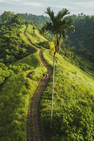 Couple walking on Campuhan Ridge Walk , Scenic Green Hill in Ubud Bali. Aerial view