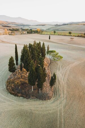 Famous Tuscany view of Cipressi di San Quirico dOrcia. Autumn aerial view of cypress trees and empty agricultural fields at sunset. Italy landscape. Popular italian landmark - Tuscan hills.