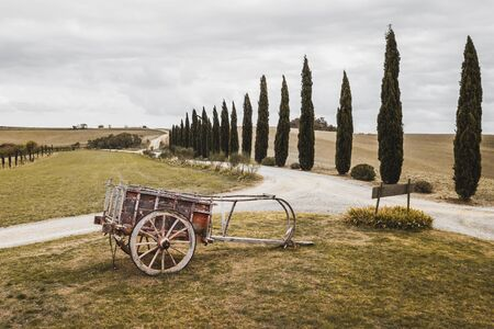 Old traditional manual wooden plow. Farm handicraft equipment. Past agricultural rural instrument. Plowing in Tuscany, Italy. Cypress alley on background.