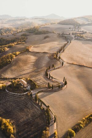 Aerial drone landscape of famous Tuscany hills, Italy. Abstract view of curved serpentine road with cypress alley. Empty agricultural fields in autumn in golden orange colours. San Quirico dOrcia. Banco de Imagens