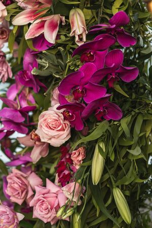 Blooming wedding arch decorations of purple orchid flowers and pink coral roses close up. Bright flowers background.