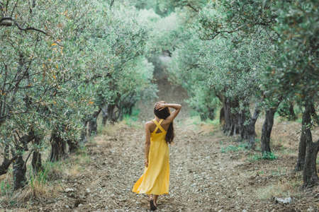Woman walking in olive tree garden. Yellow linen summer dress. Trendy color and style. View from behind. Banque d'images