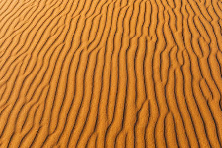 Orange texture of sand dune. Abstract shape, background, shadow and sun light. Sahara desert. Standard-Bild