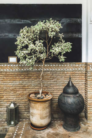 Interior design with ficus tree in clay pot, metal lantern, tiled floor and black wall. Arabic style.