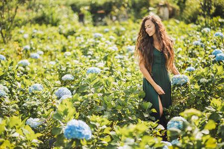 Young beautiful woman in green dress enjoying blooming blue hydrangeas flowers in garden. Gardening and florist concept. Plantation of flowers. Beauty in nature. Standard-Bild