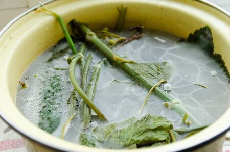 Mold in a pan with vegetables