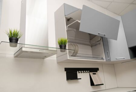 open drying cupboard with grey facades in scandinavian style next to a fume hood on which there are pots of artificial grass. Banque d'images