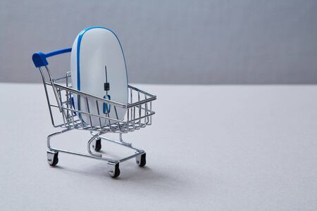Online market and and shoping. Computer mouse lying in the basket