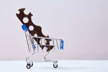 Customer service and client support concept. Home servises. Wrench in the shopping cart Reklamní fotografie
