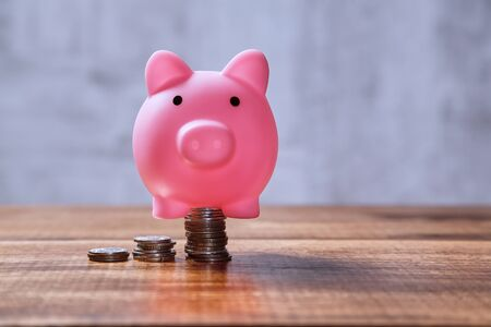 Earning, finance, investment, pension and stock market concept. Pink pig stands on a pile of coins.