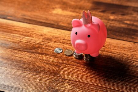 Investment or startup, growth, finance, development and pension concept. Pink pig stands on a pile of coins. 写真素材