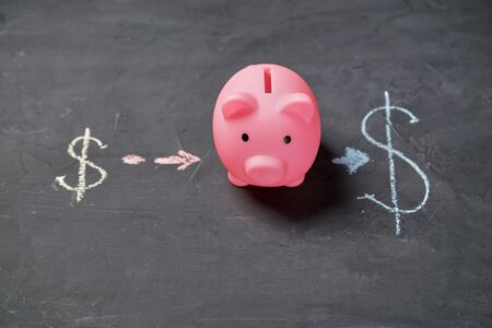 Investment or startup, growth, finance, development and trade market concept. Piggy and dollar signs.