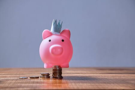 Earning, finance, investment, development and stock market concept. Pink piggy with a crown