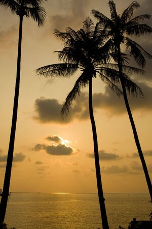 chang: Sunset over the beach, Koh Chang, Thailand.