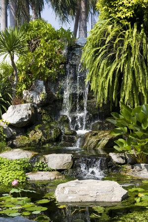 Beautiful waterfall in the garden photo