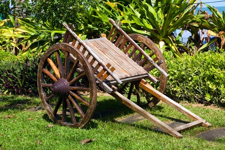 Wooden cart stands on green herb in park photo
