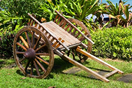 farm structure: Wooden cart stands on green herb in park