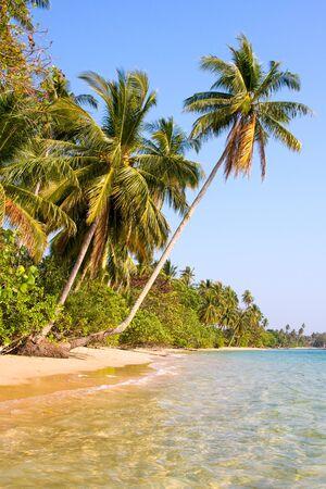 Beautiful tropical beach at island Koh Mak , Thailand photo