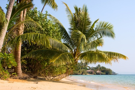 Beautiful tropical beach in Koh Mak , Thailand photo