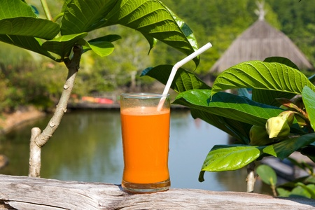 Glass of fresh carrot juice in nature photo