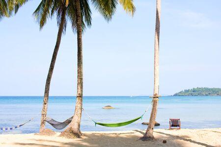 Sea, beach, jungle and hammock - vacation background photo