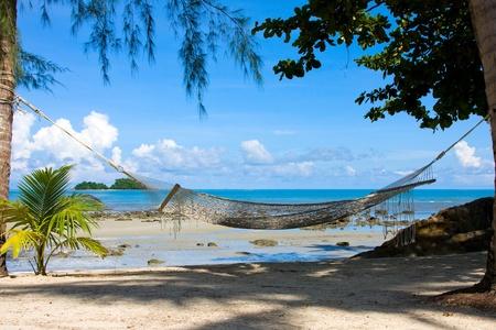 hamaca: Relajación en la hermosa playa tropical