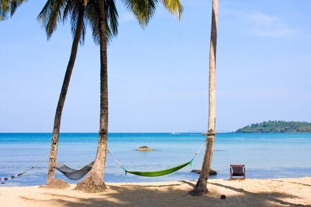 Relaxation on summer beach photo
