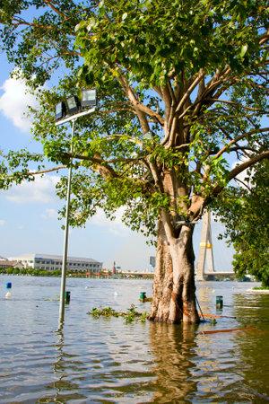 thailand flood: BANGKOK THAILAND - OCTOBER 25 : Flooding in Bangkok city on October 25, 2011 in Bangkok, Thailand. Water burst its banks on the Chao Phraya River to 2.5 m near the bridge Rama VIII. Editorial