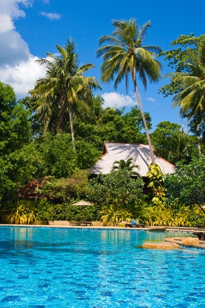 Swimming pool in Thailand . Stock Photo - 13096758