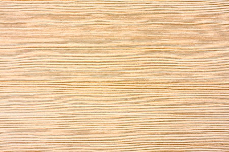 Wood texture for use as background or wallpaper photo