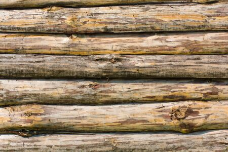 Wooden fence. Texture of uncolored wooden lining boards. Stock Photo - 14162066