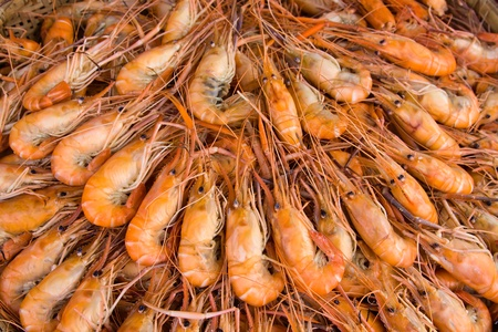 Boiled shrimp photo