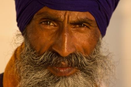 bajo y fornido: Retrato del hombre indio sij con turbante con barba tupida