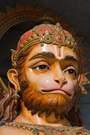 indian animal: Hanuman statue in Rishikesh, India Stock Photo