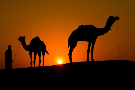 Rajasthan village. Silhouette of a man and two camels at sunset in the desert, Jaisalmer - India Stock Photo