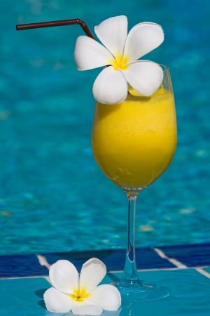Tropical cocktail at the swimming pool photo